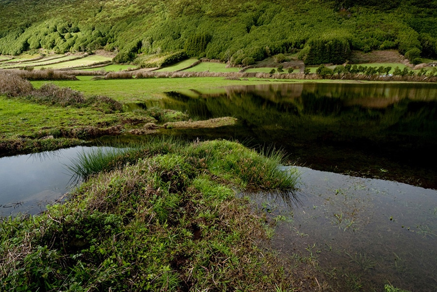 Government of the Azores marks World Wetlands Day on all islands